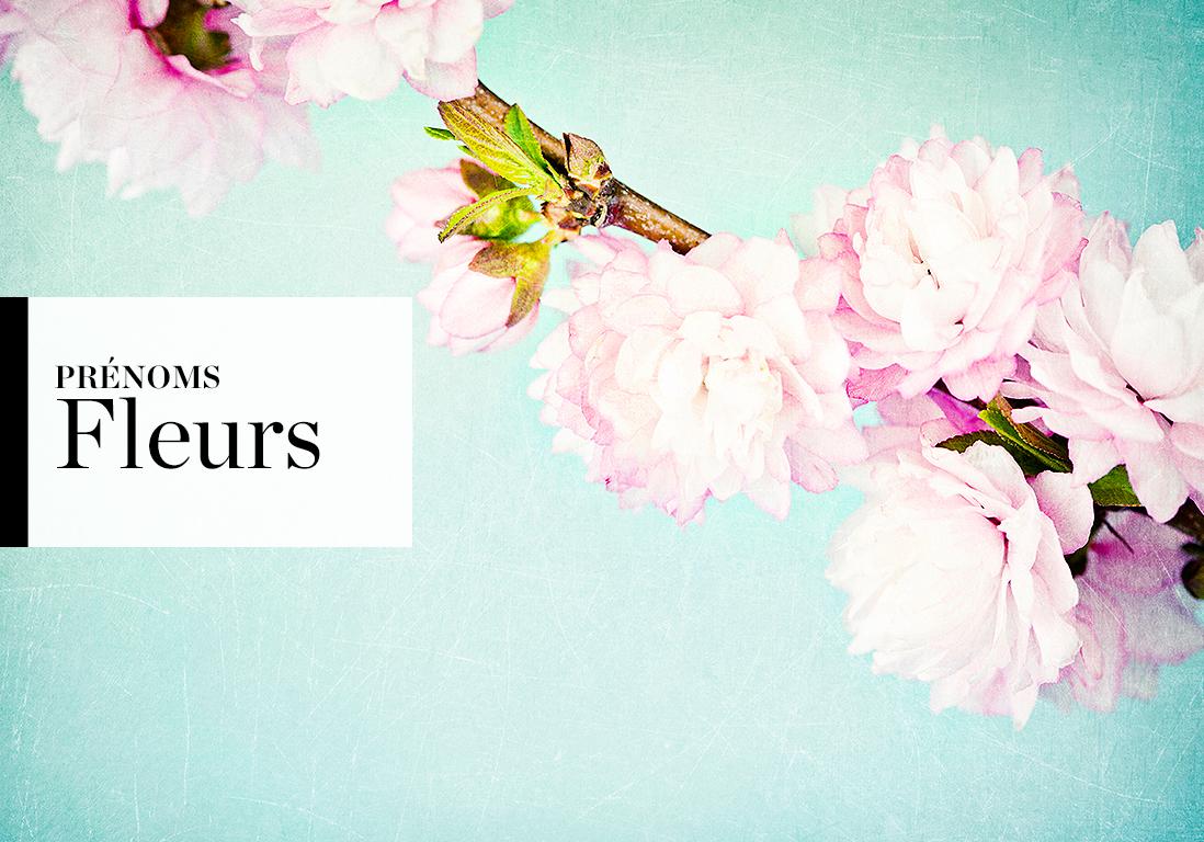 Prenoms De Fleurs Pour Filles Et Garcons Elle