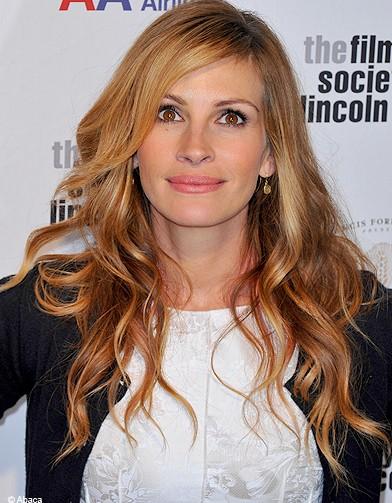 http://www.elle.fr/var/plain_site/storage/images/beaute/cheveux/coiffure/roux-les-stars-dans-la-tendance/julia-roberts/12266611-1-fre-FR/julia_roberts_reference.jpg