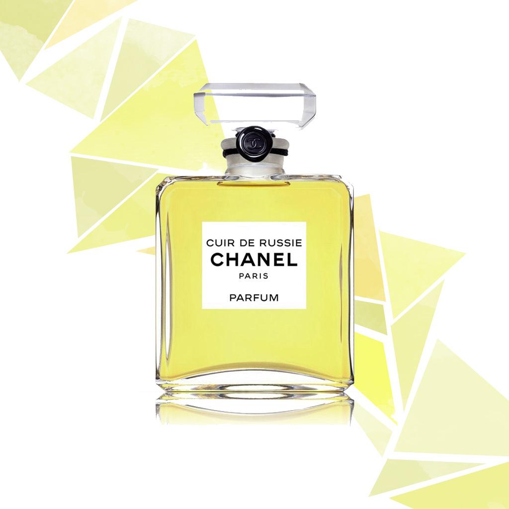 ParfumPourquoi Nous Cuir L'odeur Séduit Du Elle thQxdrsCB
