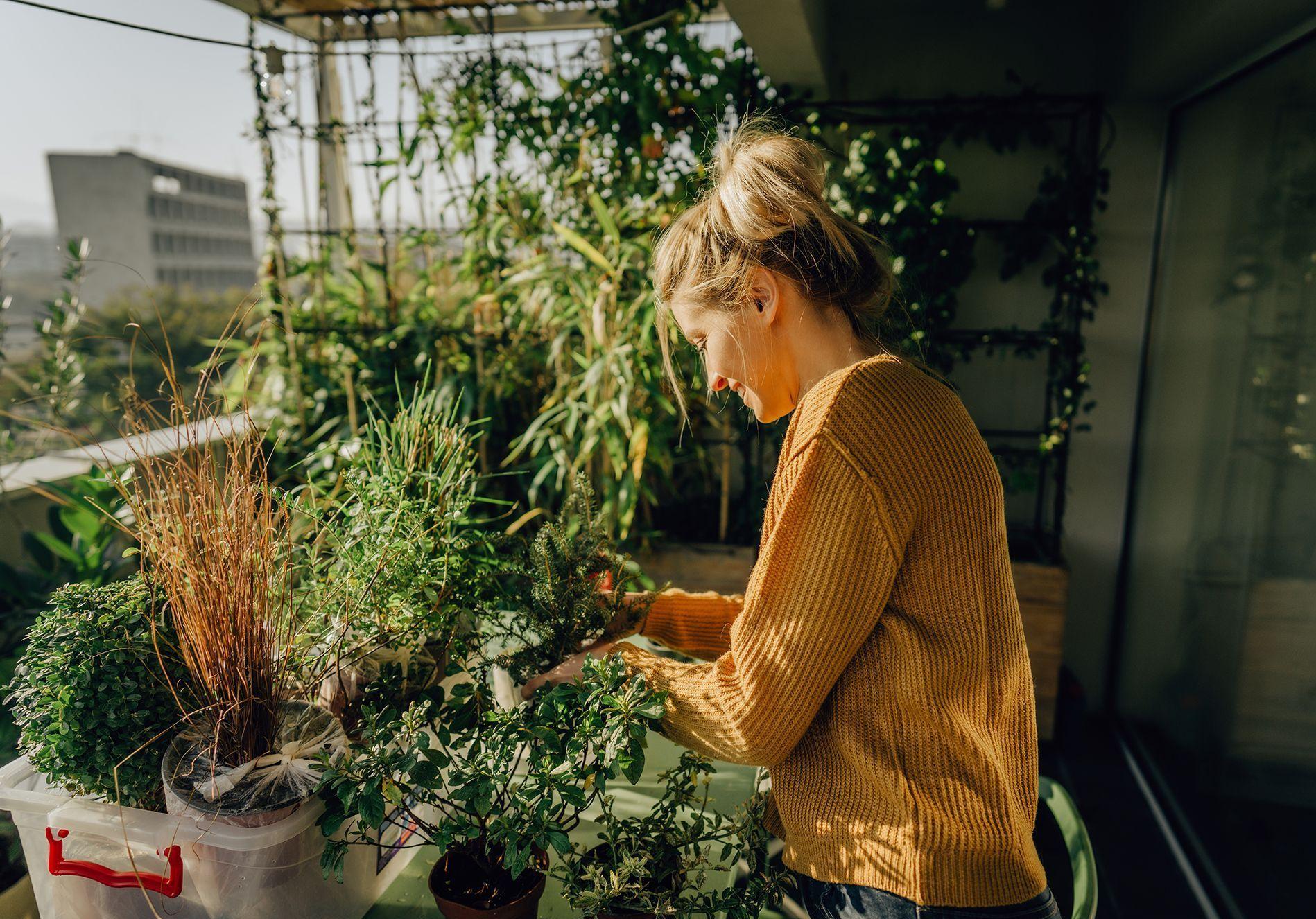 8 astuces pour avoir un balcon nourricier en permaculture - Elle Décoration