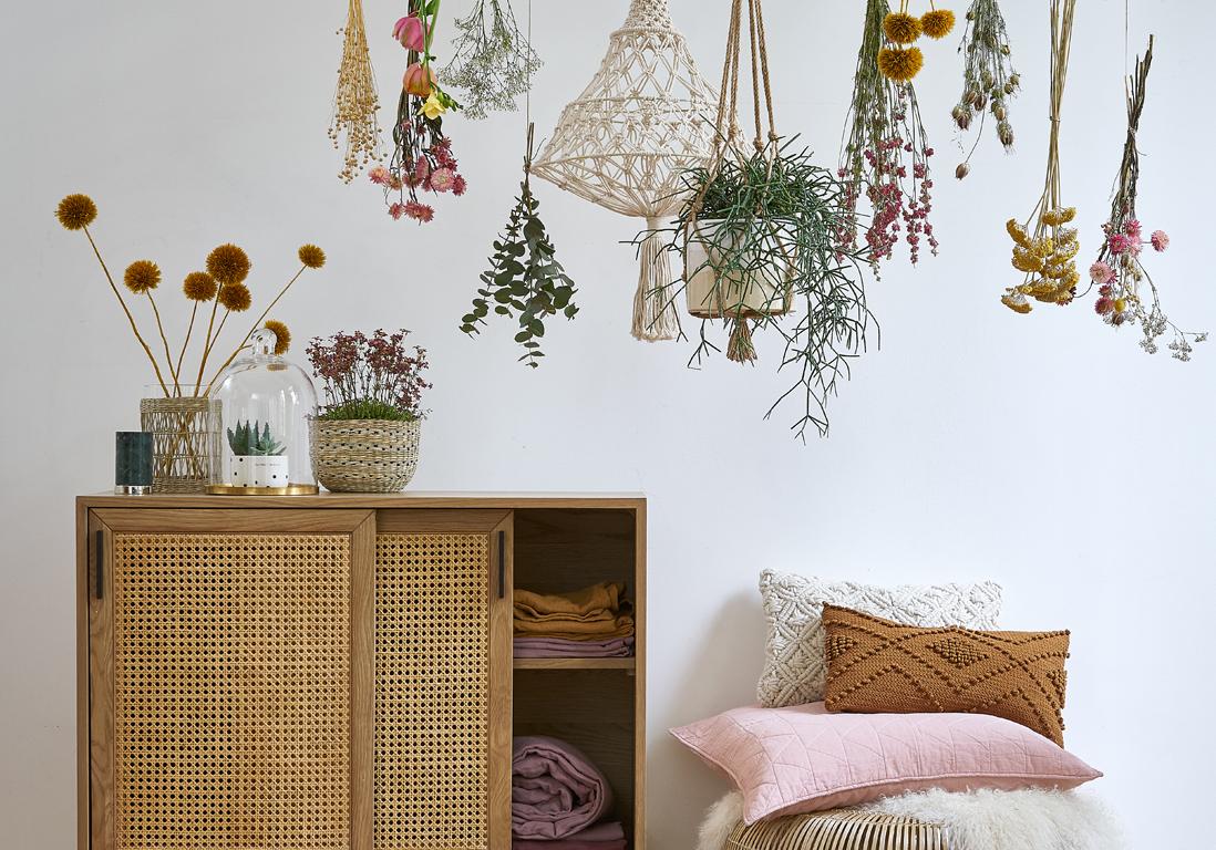 Plante Pour Salle De Bain Sombre sommeil : 7 plantes pour mieux dormir - elle décoration