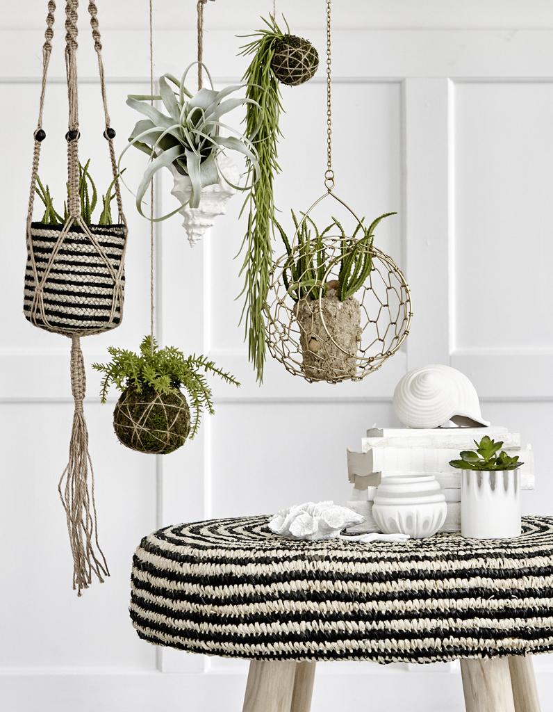 Nos meilleures idées pour une décoration végétale tendance elle décoration