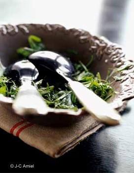 salade d'herbes Salade_d_herbes_large_recette