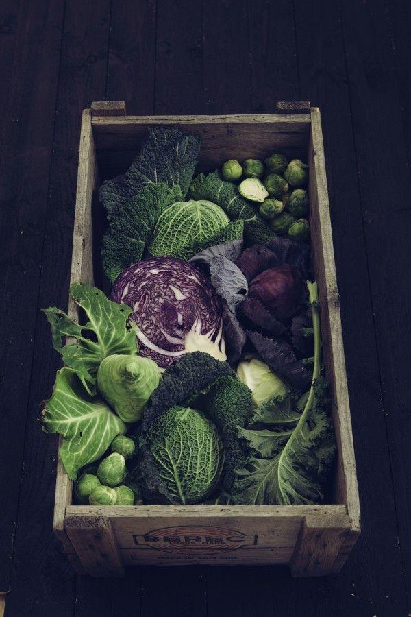 Fruits et légumes de saison en octobre : le chou vert - Quels sont les fruits et légumes de ...