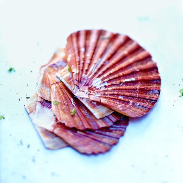 Noix de saint jacques 4 recettes faciles pour cuisiner - Comment cuisiner les noix de st jacques ...