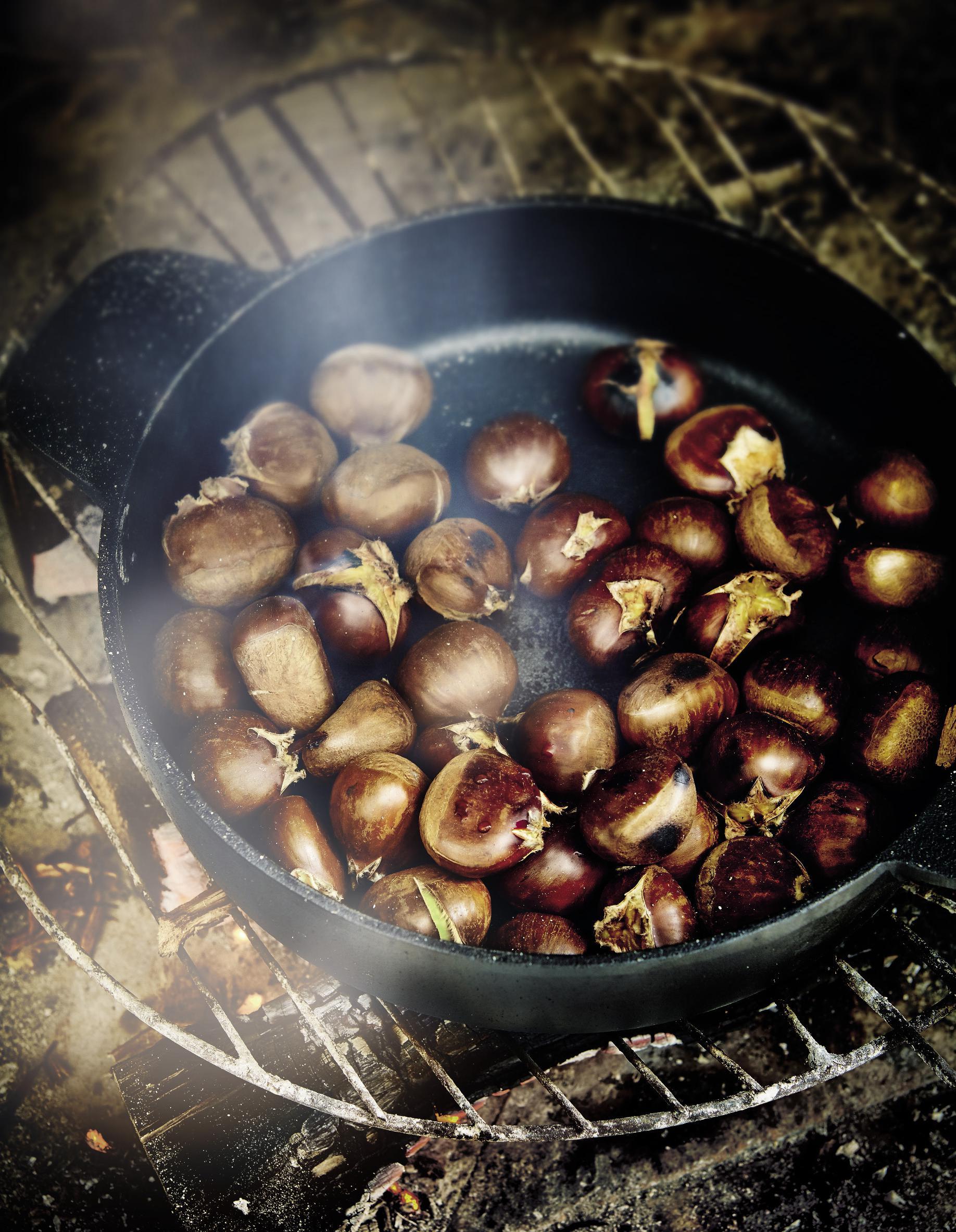 Cuisine Feu De Bois châtaignes grillées au feu de bois pour 4 personnes - recettes elle