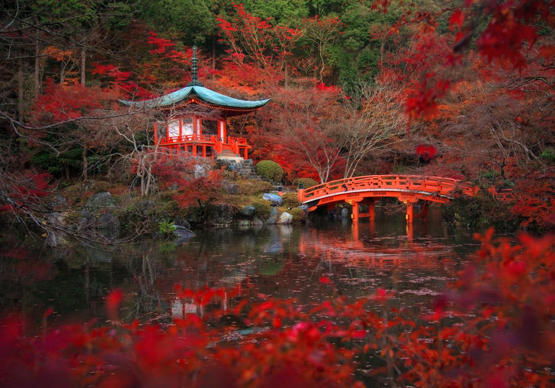 kyoto japon les 25 plus belles villes du monde qui. Black Bedroom Furniture Sets. Home Design Ideas