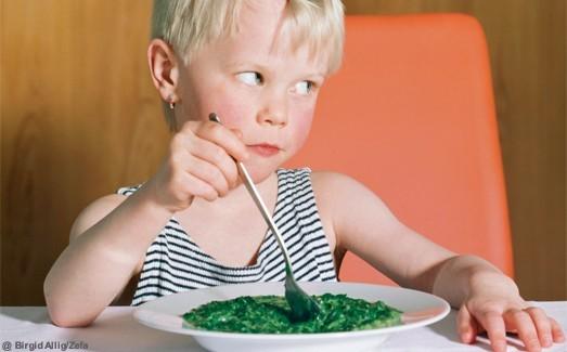 http://www.elle.fr/var/plain_site/storage/images/maman/mon-enfant/idees-recettes/pratique/5-idees-pour-tout-faire-manger-aux-enfants/12123140-4-fre-FR/5-idees-pour-tout-faire-manger-aux-enfants_image_dossier_paysage.jpg