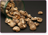 x-mag-champignons-seches-c820c.png