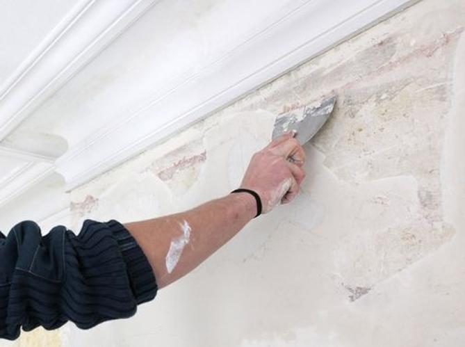 Peindre Un Mur  Elle Dcoration