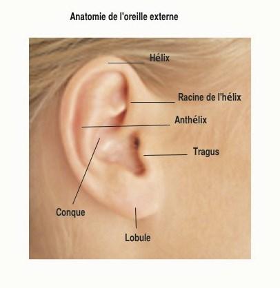 pour comprendre oreille decollee.jpg.jpg