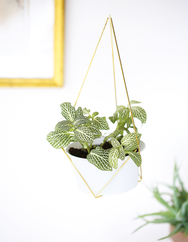 suspension-de-plante-diy