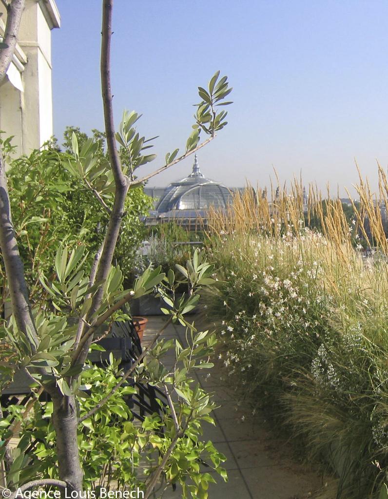 Jardin urbain nos bonnes adresses parisiennes elle for Jardin urbain paysagiste