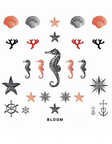 inspirations tatouages inspiration tatouages tatouages pour l 39 t coquillage hippocampe. Black Bedroom Furniture Sets. Home Design Ideas