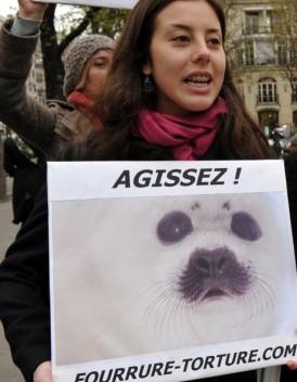 Societe_Les-anti-fourrures-a-Paris-pour-denoncer-la-torture-des-betes_mode_une.jpg